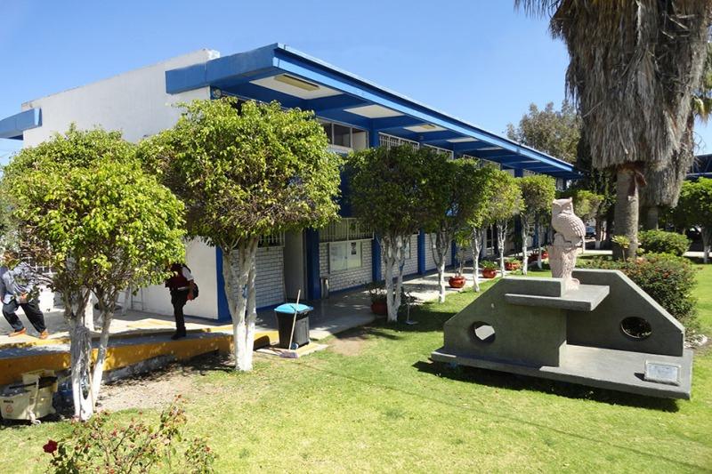 biblioteccas2.jpg