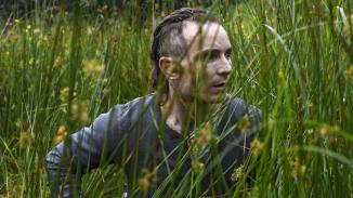 The Survivalist Cineteca Alameda 1