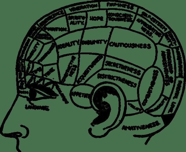 brain-2029363_960_720.png