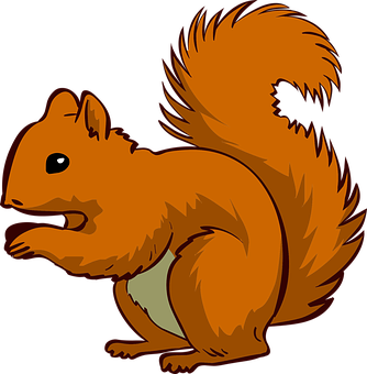 squirrel-1456764__340.png