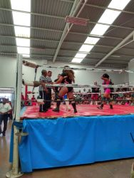 luchas 5