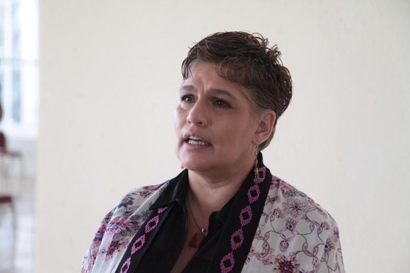 Dip. Patricia Silva Celis
